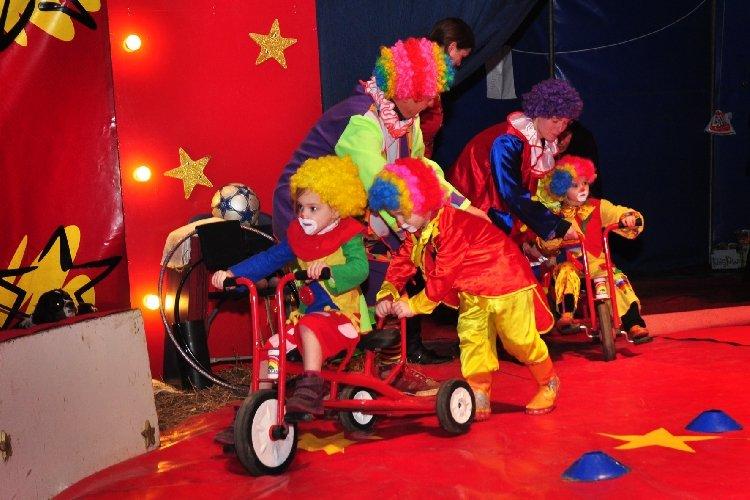 Circuskamp Picolini